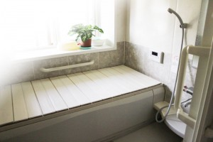 お風呂で小さな羽虫を見つけたら!水回りのコバエ・チョウバエの発生源と駆除・対策