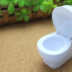 お部屋掃除のマストポイント!トイレの壁のしつこい黄ばみの落とし方