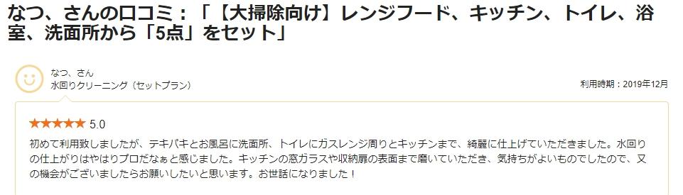 【レビュー更新】 大掃除・水まわりクリーニングセット